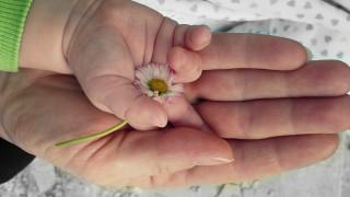 Επίδομα γέννησης: Πώς θα συμπληρώσετε την αίτηση