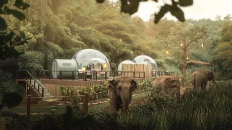 Διαμονή σε… φούσκα και ελέφαντες για συντροφιά: Γνωρίστε τον μαγευτικό προορισμό της Ταϊλάνδης