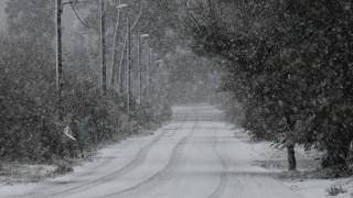 Κακοκαιρία: Στα λευκά «ντύθηκαν» τα Τρίκαλα