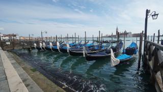 Οι τουρίστες εξαφανίστηκαν, τα ψάρια επέστρεψαν: Πιο καθαρά από ποτέ τα νερά της Βενετίας