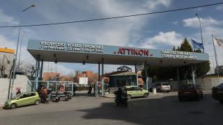 Κορωνοϊός - Γιαμαρέλλος: Ξεκινάμε κλινική μελέτη ανοσοθεραπείας σε έξι ελληνικές ΜΕΘ