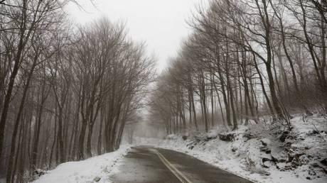 Καιρός: Στα λευκά «ντύθηκε» ο Χορτιάτης - Χιόνια και στην Ελασσόνα