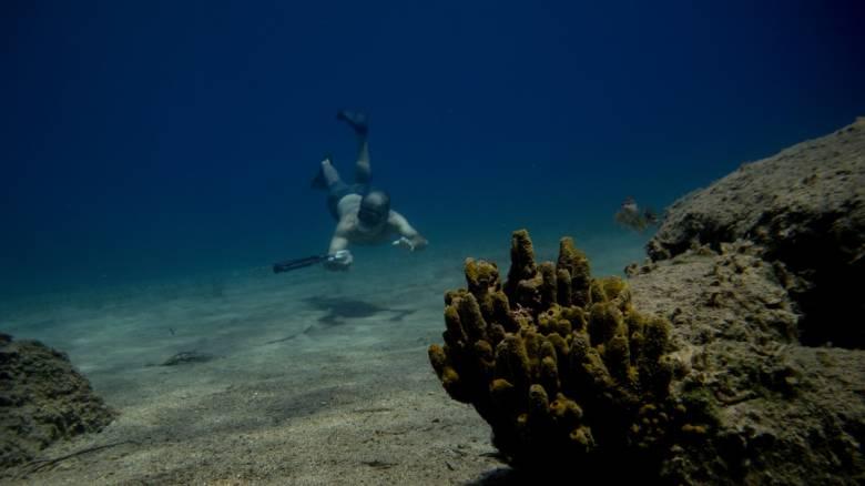 Κορωνοϊός: Απαγόρευση κολύμβησης και υποβρύχιας αλιείας από το υπ. Ναυτιλίας