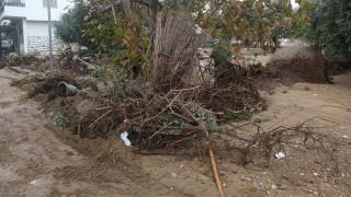 Κακοκαιρία: Σε κατάσταση έκτακτης ανάγκης Σκιάθος, Σκόπελος, Νότιο Πήλιο και Ζαγορά