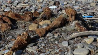 Ρόδος: Βλήμα εντοπίστηκε σε παραλία