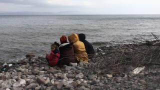 Διάθεση 181 ειδικών containers από την αυστριακή κυβέρνηση για φροντίδα προσφύγων