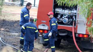 Φωτιά στη Χίο - Ένας τραυματίας