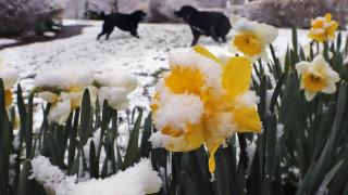 CNN Spotlight: Σε χιονισμένο τοπίο ξύπνησαν στα μέσα Απριλίου αρκετές πολιτείες στην Αμερική
