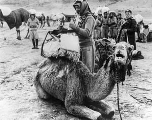 1942, Ιορδανία.  Ο πυρήνας του τάγματος των Δρούζων, δημιουργήθηκε από 150 πρώην μέλη της Λεγεώνας των Ξένων, τα οποία προσχώρησαν στις βρετανικές δυνάμεις κατά τη διάρκεια της εκστρατείας στη Συρία. Οι άντρες είχαν ηλικία από 16 έως 60 ετών και ήταν έφι
