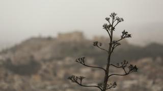 Καιρός: Αίθριος με άνοδο της θερμοκρασίας την Τρίτη