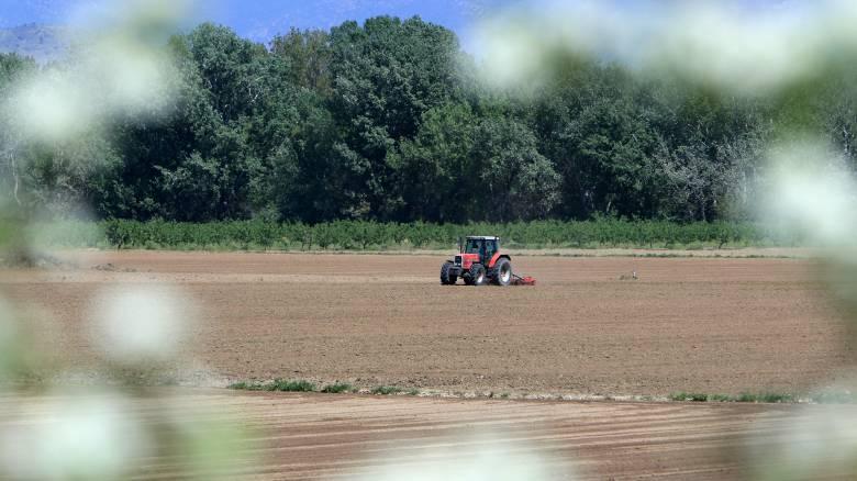 Ορχομενός: Αγρότης εντοπίστηκε νεκρός στο χωράφι του