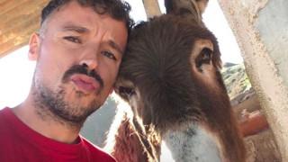 Η συγκινητική στιγμή που ένας Ισπανός ξανασυναντά το γάιδαρό του μετά την καραντίνα