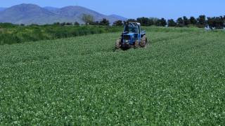 Ρύθμιση για επίδομα ανεργίας στους εργάτες γης