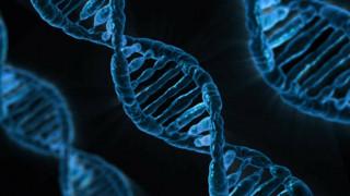 ΗΠΑ: Ελληνίδα επιστήμονας ανοίγει νέο δρόμο για θεραπεία της οξείας μυελογενούς λευχαιμίας