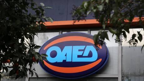 ΟΑΕΔ: Ξεκινά η υποβολή αιτήσεων για το πρόγραμμα χορήγησης επιταγών αγοράς βιβλίων έτους 2020