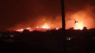 Ζάκυνθος: Σε εξέλιξη η μεγάλη φωτιά κοντά στις Μαριές - Ισχυρές δυνάμεις στο σημείο