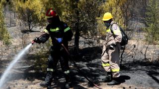 Φωτιά στο Ρέθυμνο - Συναγερμός στην Πυροσβεστική