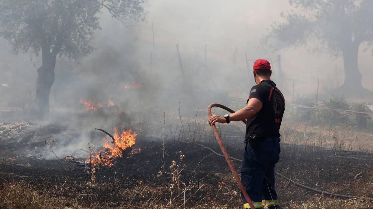Ζάκυνθος: Σε ύφεση η μεγάλη φωτιά κοντά στις Μαριές