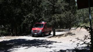 Υπό μερικό έλεγχο η πυρκαγιά στη Χαλκιδική