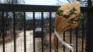 Μάτι: Έφοδοι ανακριτή σε υπηρεσίες - Κατασχέθηκαν κρίσιμα στοιχεία