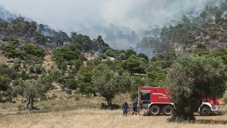 Φωτιά στον Ασπρόπυργο: Οι ισχυροί άνεμοι και το δύσβατο σημείο δυσχεραίνουν την κατάσβεση