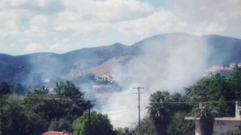 Υπό έλεγχο φωτιά που ξέσπασε κοντά σε σπίτια στα Νέα Στύρα Ευβοίας