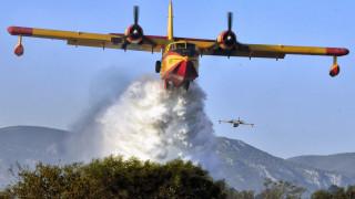 Φωτιά στο Άγιο Όρος: Υπό μερικό έλεγχο η πυρκαγιά - Κανένα ενεργό μέτωπο