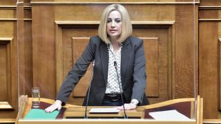 Γεννηματά: Ανενεργός ο νόμος για την Πολιτική Προστασία έξι μήνες μετά την ψήφισή του