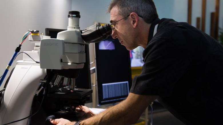 Δημιουργήθηκε η πρώτη τεχνητή σύναψη εγκεφάλου που επικοινωνεί με τα ζωντανά κύτταρα
