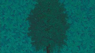 Στο σφυρί, η «Αψίδα του Θριάμβου» του Μαγκρίτ - Από 8 έως 12 εκατ. δολάρια η αρχική εκτίμηση