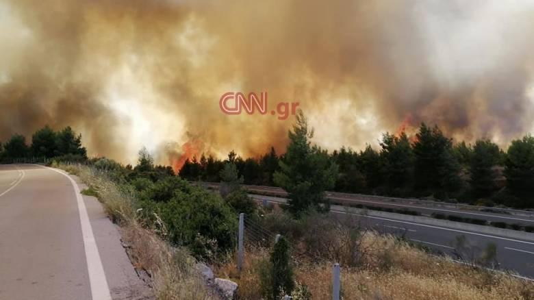Μεγάλη φωτιά στον Μαρτίνο Φθιώτιδας - Διακοπή κυκλοφορίας στην εθνική οδό