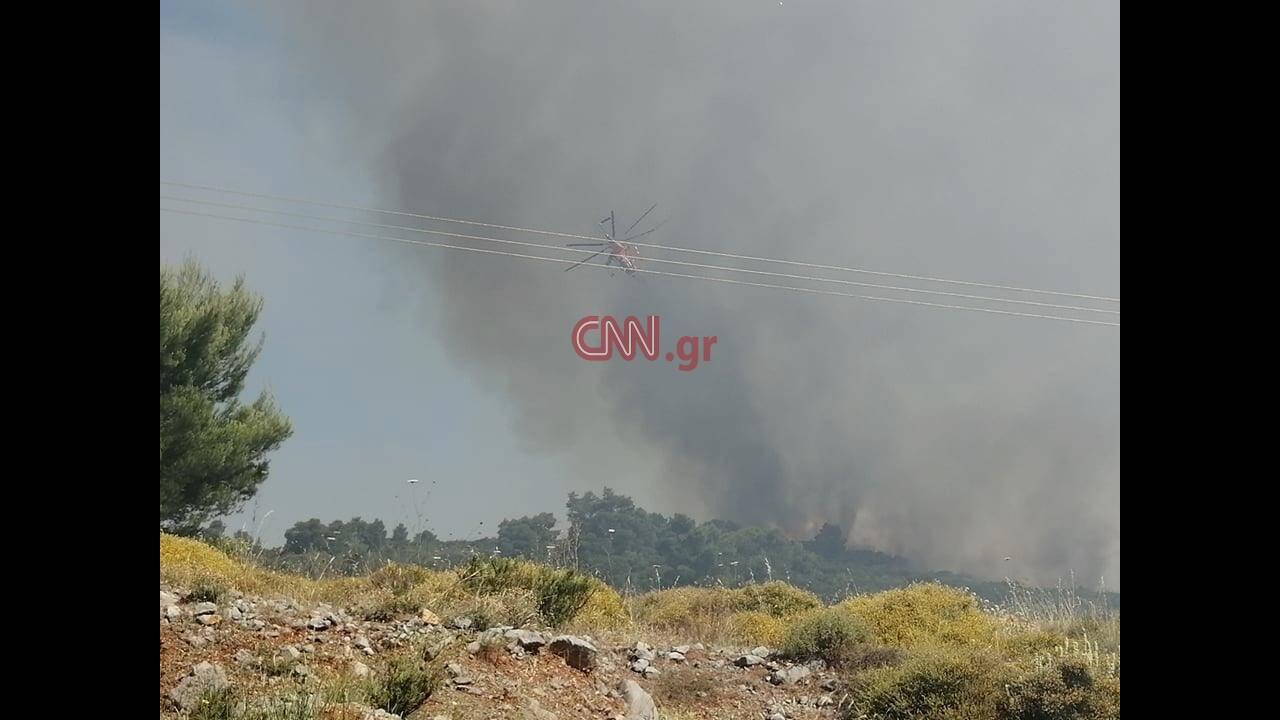 https://cdn.cnngreece.gr/media/news/2020/06/19/224015/photos/snapshot/104602127_1421642268021010_5392064100087900198_n.jpg