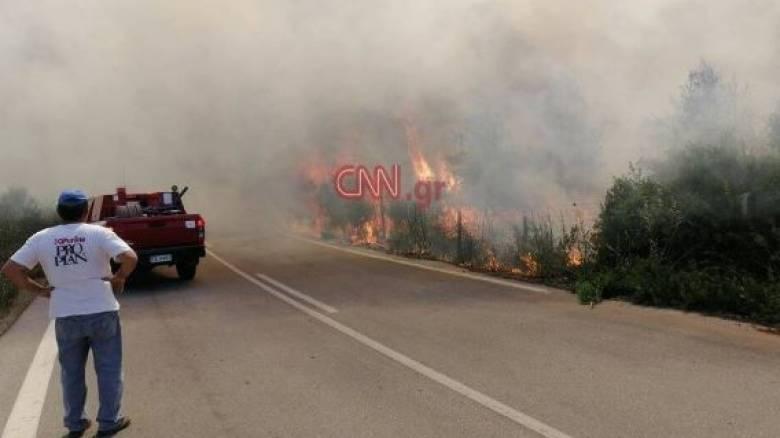 Φωτιά στον Μαρτίνο: Διάσπαρτες εστίες χωρίς ενεργό μέτωπο - Σε επιφυλακή η Πυροσβεστική