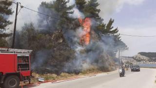 Φωτιά στο Αργάσι Ζακύνθου - Μεγάλη κινητοποίηση της Πυροσβεστικής