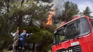 Υπό μερικό έλεγχο η φωτιά στο Αργάσι Ζακύνθου