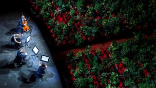 Βαρκελώνη: Οι μουσικοί της Όπερας παίζουν σε μια αίθουσα χωρίς θεατές, αλλά γεμάτη φυτά