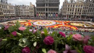 Ο Τάπητας Λουλουδιών στις Βρυξέλλες σε ένα εκπληκτικό time-lapse βίντεο