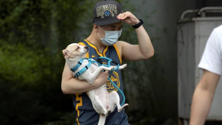 Κορωνοϊός - Κίνα: 17 νέα κρούσματα μόλυνσης - Τα 14 στο Πεκίνο