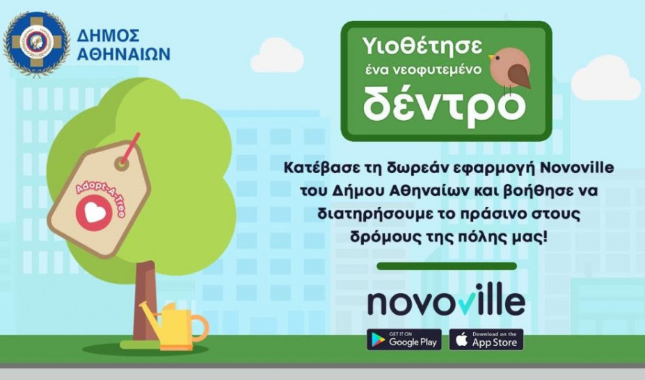 adopt tree dimos athinaion