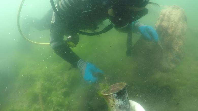 P&G - ΑΒ Βασιλόπουλος: Καθαρότερες ελληνικές θάλασσες & ακτές σε Αθήνα, Θεσσαλονίκη και Βόλο
