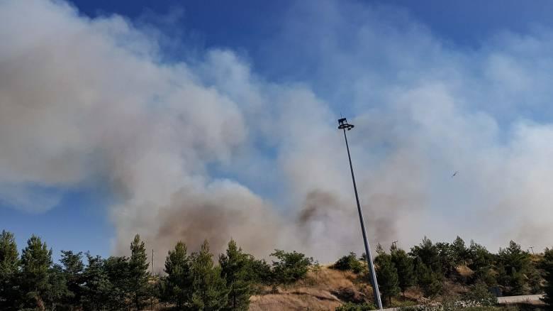 Φωτιά στην Κάρυστο: Υποψίες για εμπρησμό - Συνεχίζεται η κατάσβεση