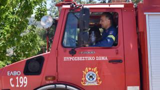 Υπό μερικό έλεγχο η φωτιά στη Κάρυστο - Σύλληψη για εμπρησμό από αμέλεια