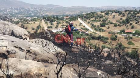 Συναγερμός στην Πυροσβεστική: Φωτιά σε δασική έκταση στα Σπάτα