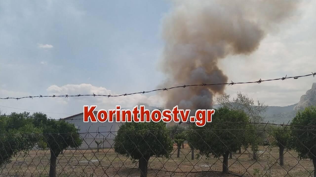 https://cdn.cnngreece.gr/media/news/2020/07/09/226579/photos/snapshot/fwtia3.jpg