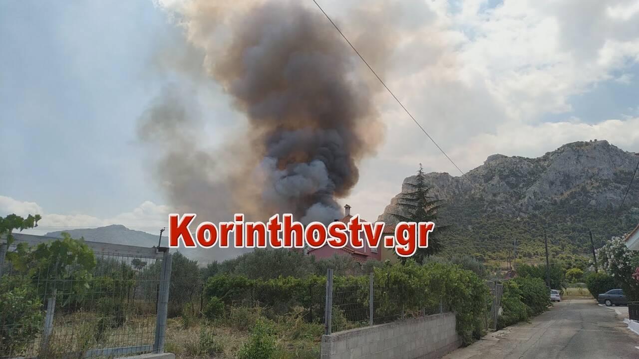 https://cdn.cnngreece.gr/media/news/2020/07/09/226579/photos/snapshot/fwtia4.jpg