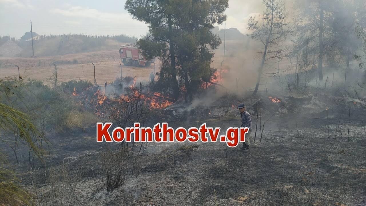 https://cdn.cnngreece.gr/media/news/2020/07/09/226579/photos/snapshot/fwtia7.jpg