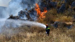 Φωτιά Κόρινθος: Απομακρύνθηκαν τα παιδιά από την κατασκήνωση - Παραμένουν οι ισχυρές δυνάμεις