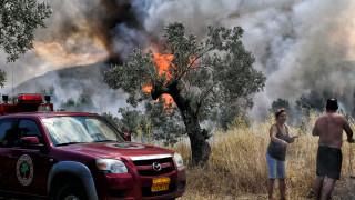 Φωτιά Κόρινθος: Εικόνες από τη μεγάλη πυρκαγιά στις Κεχριές