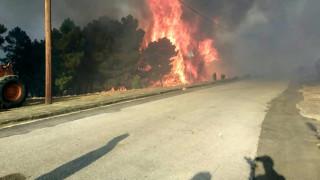 Μεγάλη φωτιά στις Σάπες Ροδόπης: Στις αυλές σπιτιών οι φλόγες - Εντολή για εκκένωση οικισμού