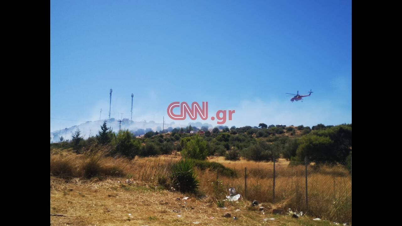https://cdn.cnngreece.gr/media/news/2020/07/10/226714/photos/snapshot/107510834_311973519846132_1229931314824068242_n.jpg